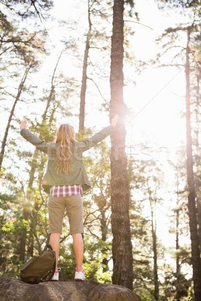 Gondtalan szőke nő természetjáró áll kő karok Stock fotó © wavebreak_media