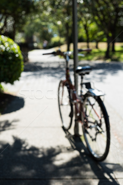Blur view of bicycle parked in a park Stock photo © wavebreak_media