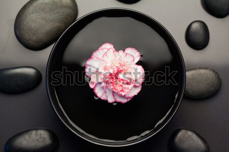 Pink and white carnation floating in a black bowl with aligned black stones above it focus on the fl Stock photo © wavebreak_media