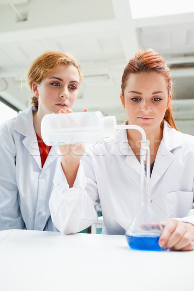 Portrait of scientists doing an experiment in a laboratory Stock photo © wavebreak_media