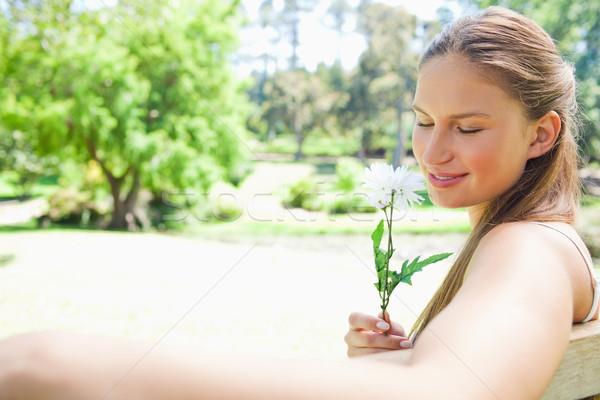 Vue de côté jeune femme parc banc fleur beauté Photo stock © wavebreak_media