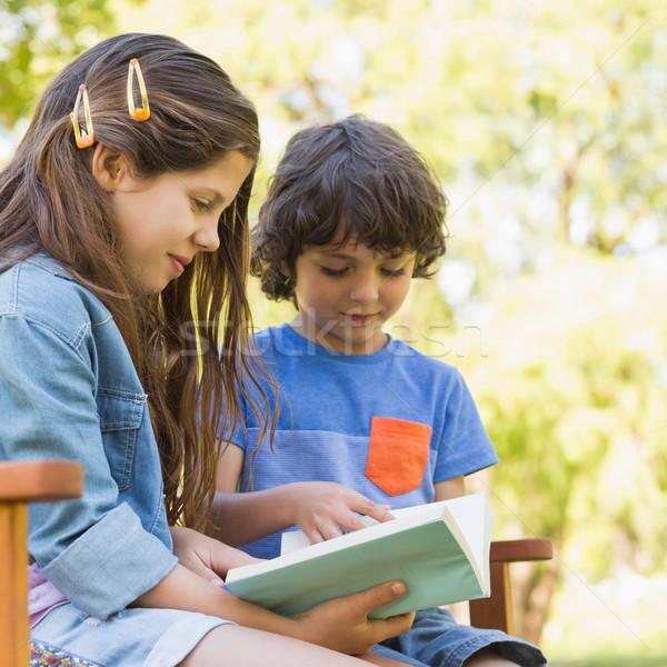 Vue de côté enfants lecture livre parc banc Photo stock © wavebreak_media