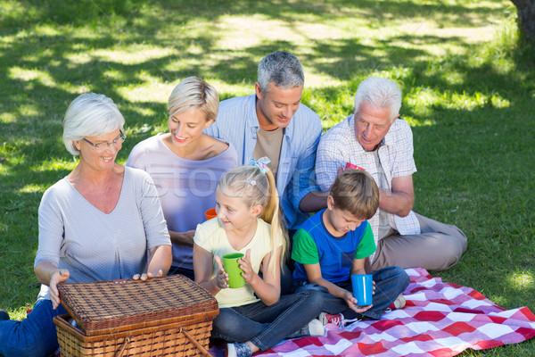Familia feliz picnic parque mujer árbol Foto stock © wavebreak_media