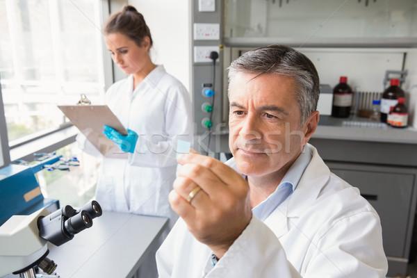 Kıdemli bilim adamı bakıyor slayt laboratuvar okul Stok fotoğraf © wavebreak_media