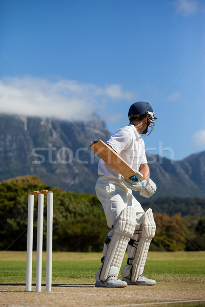 Críquete jogador blue sky campo céu Foto stock © wavebreak_media