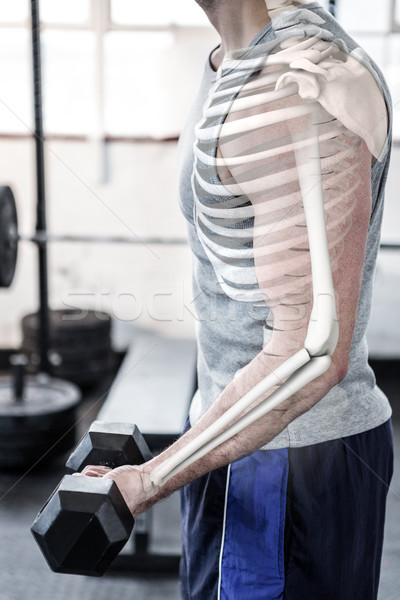 Kar erős férfi emel súlyok tornaterem Stock fotó © wavebreak_media