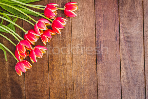 Few beautiful red flowers against wood plank Stock photo © wavebreak_media