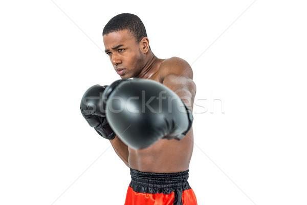 Boxoló előad hozzáállás fehér box férfi Stock fotó © wavebreak_media