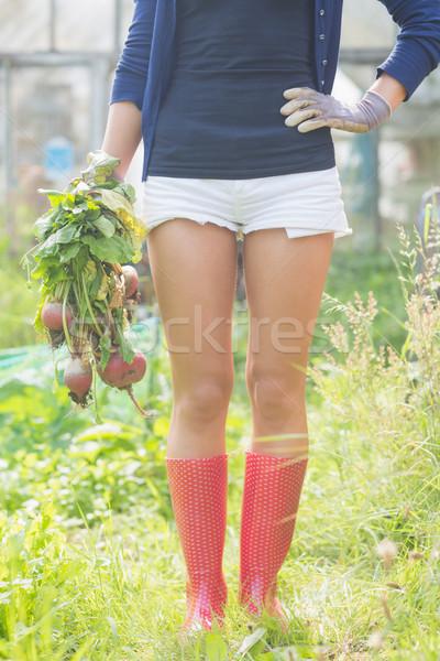 Nő tart otthon megnőtt zöldségek kert Stock fotó © wavebreak_media