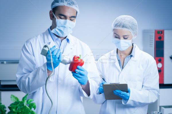 Alimentaire scientifique appareil poivre Université homme Photo stock © wavebreak_media