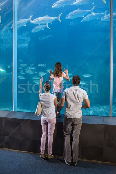 Happy family looking at fish tank Stock photo © wavebreak_media