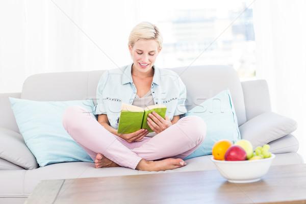 Güzel sarışın kadın okuma kitap kanepe oturma odası Stok fotoğraf © wavebreak_media