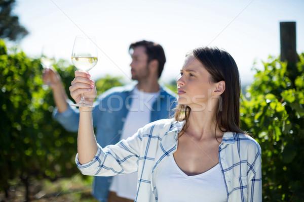 ワイングラス 畑 ポーズ 女性 ワイン ストックフォト © wavebreak_media