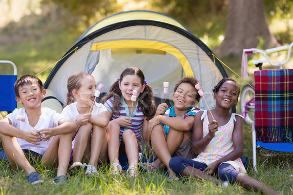 Happy friends holding candies by tent at campsite Stock photo © wavebreak_media