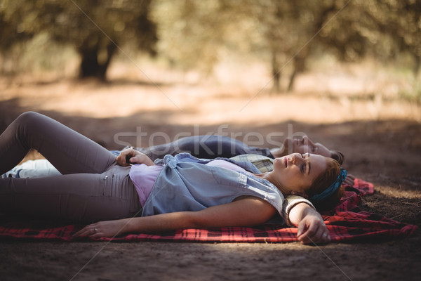 Young couple napping on mat at olive farm Stock photo © wavebreak_media