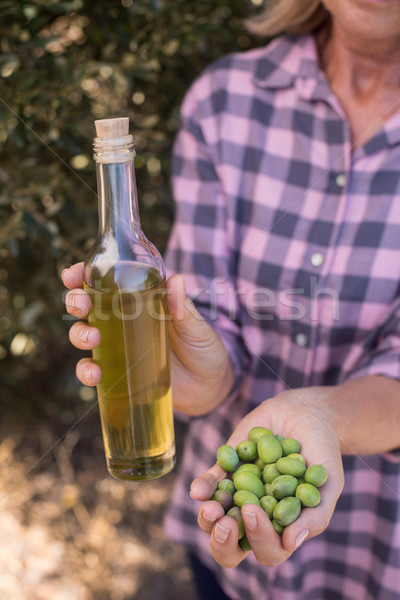 Woman holding olive oil and harvested olives Stock photo © wavebreak_media
