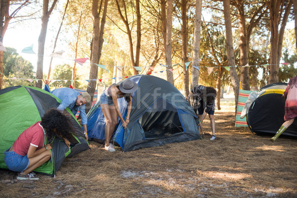 Friends setting up their tents together on field Stock photo © wavebreak_media