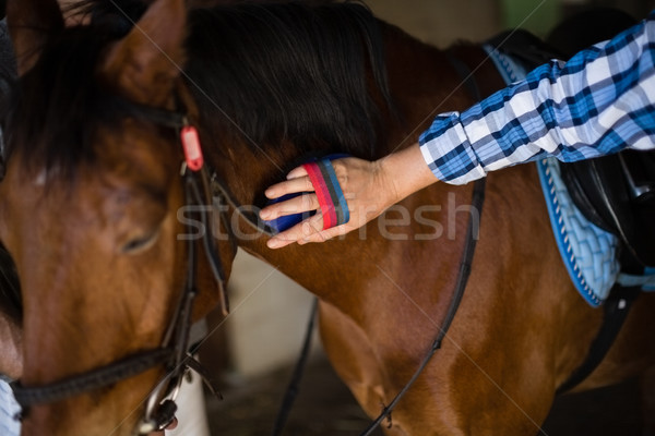 Man grooming the horse in the stable Stock photo © wavebreak_media