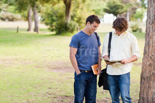 Kettő áll férfi diákok beszél park Stock fotó © wavebreak_media