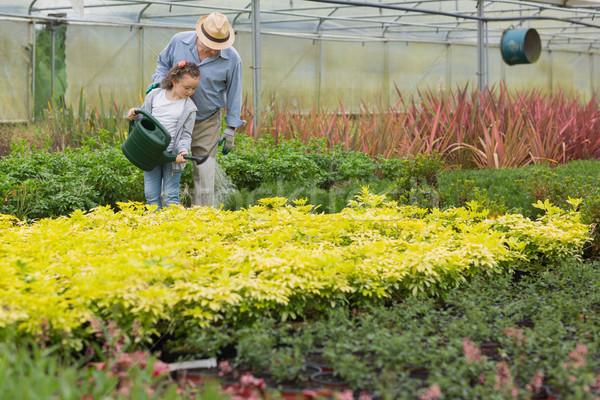 Nagyapa gyermek locsol növények üvegház család Stock fotó © wavebreak_media