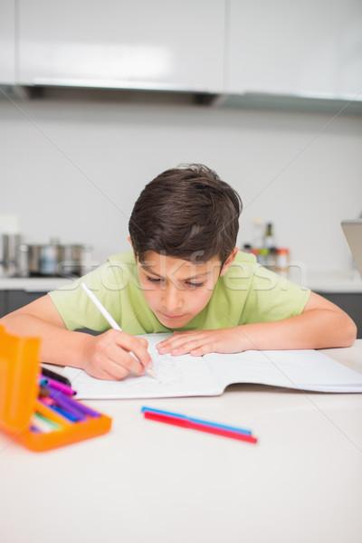 концентрированный мальчика домашнее задание кухне домой Сток-фото © wavebreak_media
