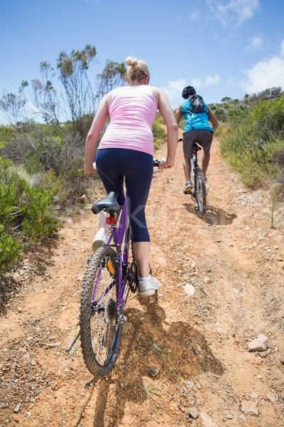 Montare Coppia ciclismo up montagna percorso Foto d'archivio © wavebreak_media