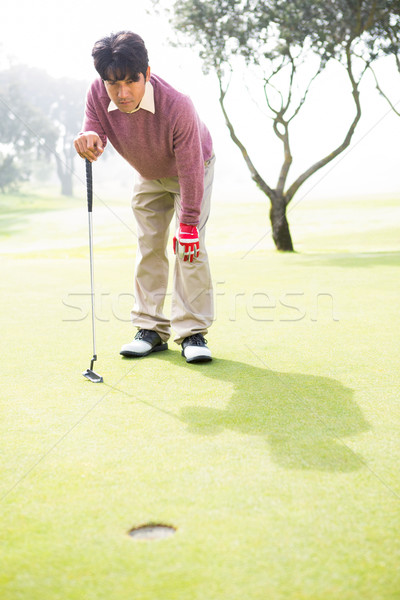 Jogador de golfe olhando buraco campo de golfe esportes verde Foto stock © wavebreak_media