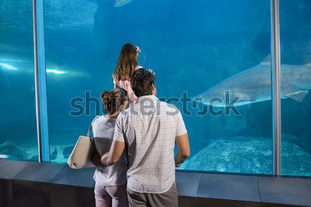 Happy couple beside the fish tank Stock photo © wavebreak_media