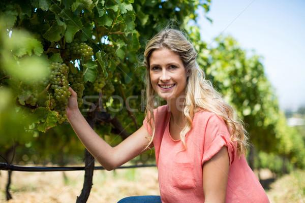 Portre gülümseyen kadın üzüm büyüyen bağ Stok fotoğraf © wavebreak_media
