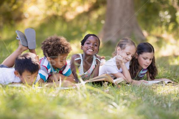 друзей чтение книга травянистый области Сток-фото © wavebreak_media
