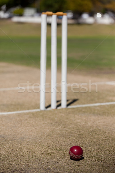 High angle view of ball by stumps on cricket field Stock photo © wavebreak_media