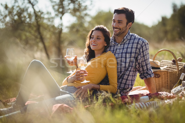 Smiling young couple holding wineglasses while relaxing on picnic blanket Stock photo © wavebreak_media