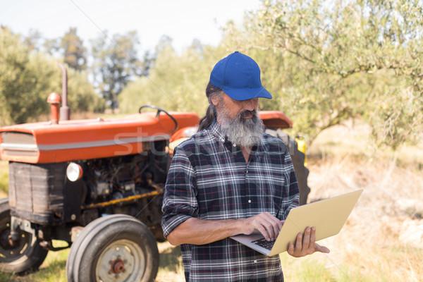 Man using laptop in olive farm Stock photo © wavebreak_media
