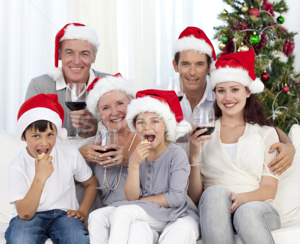 Family drinking wine and eating sweets in Christmas Stock photo © wavebreak_media