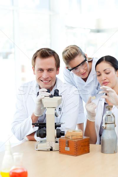 Tudósok néz csúszda mikroszkóp dolgozik munka Stock fotó © wavebreak_media