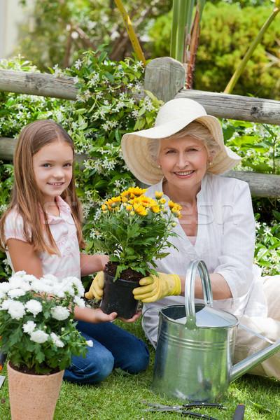 Avó neta trabalhando jardim menina sorrir Foto stock © wavebreak_media