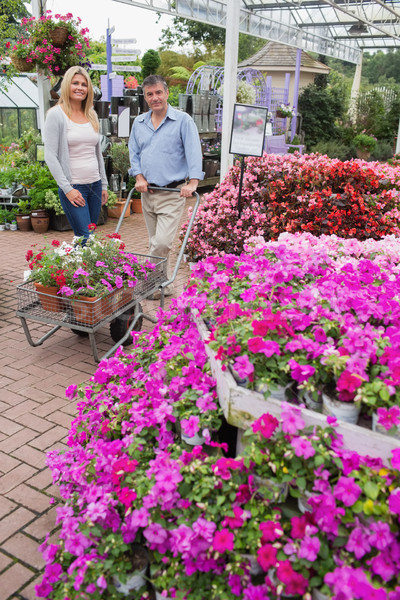 Couple pushing trolley outside garden center while smiling Stock photo © wavebreak_media