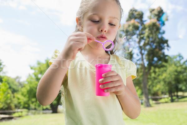 Kız sabun köpüğü park sevimli genç kız Stok fotoğraf © wavebreak_media