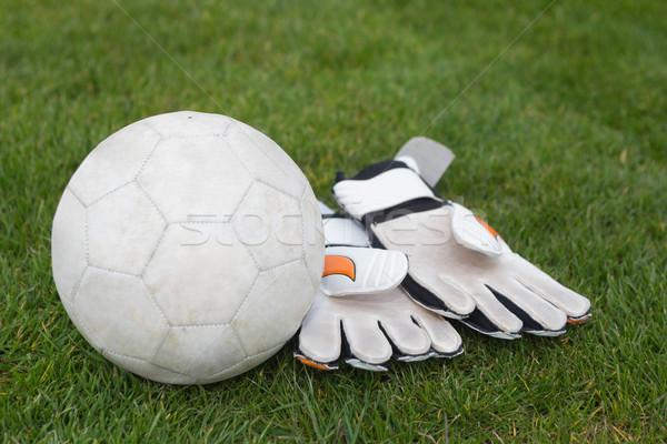 Kesztyű futball pálya fű sport labda Stock fotó © wavebreak_media