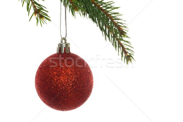 Stok fotoğraf: Kırmızı · Noel · önemsiz · şey · asılı · şube · beyaz