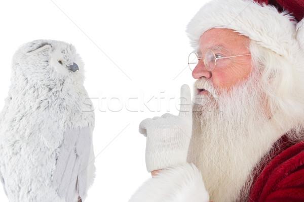 Padre Natale tranquillo gufo bianco uomo Foto d'archivio © wavebreak_media