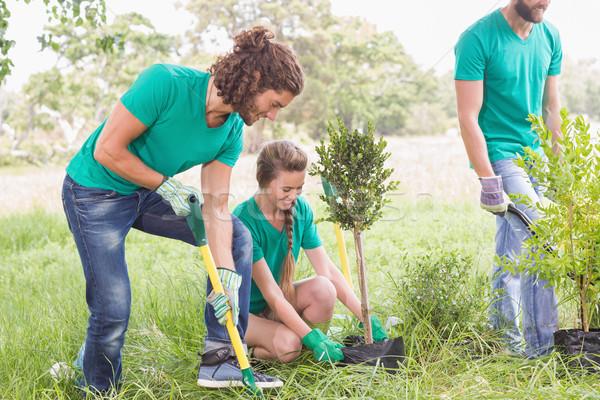 Fiatal nő kertészkedés közösség napos idő nő férfi Stock fotó © wavebreak_media