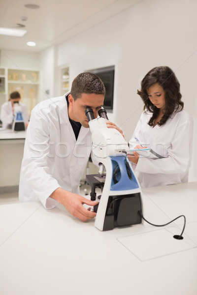 медицинской студентов рабочих микроскоп университета женщину Сток-фото © wavebreak_media