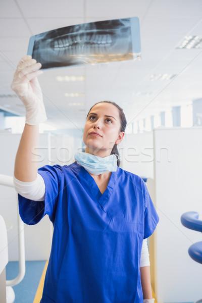 Concentrated dentist examining a x-ray Stock photo © wavebreak_media