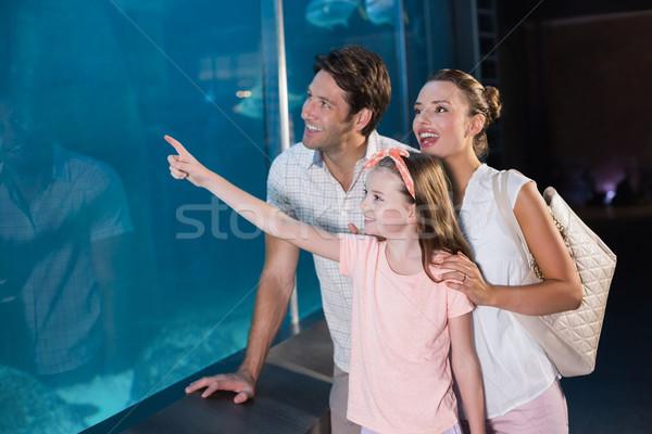 Família feliz olhando tubarão aquário amor homem Foto stock © wavebreak_media
