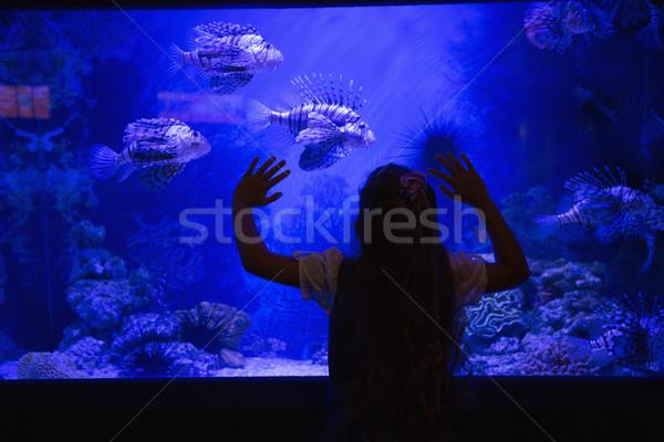 Little girl olhando peixe tanque aquário mãos Foto stock © wavebreak_media