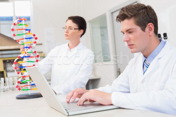 Cientista trabalhando laptop outro dna modelo Foto stock © wavebreak_media