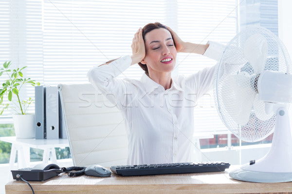 Smiling businesswoman before the fan  Stock photo © wavebreak_media