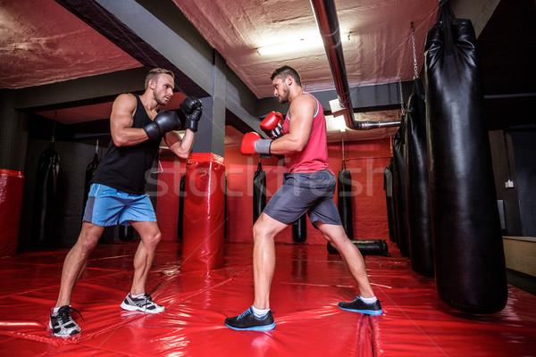 Dos boxeo hombres junto salud Foto stock © wavebreak_media