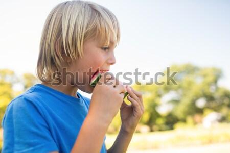 少年 スイカ 公園 クローズアップ ツリー ノートパソコン ストックフォト © wavebreak_media